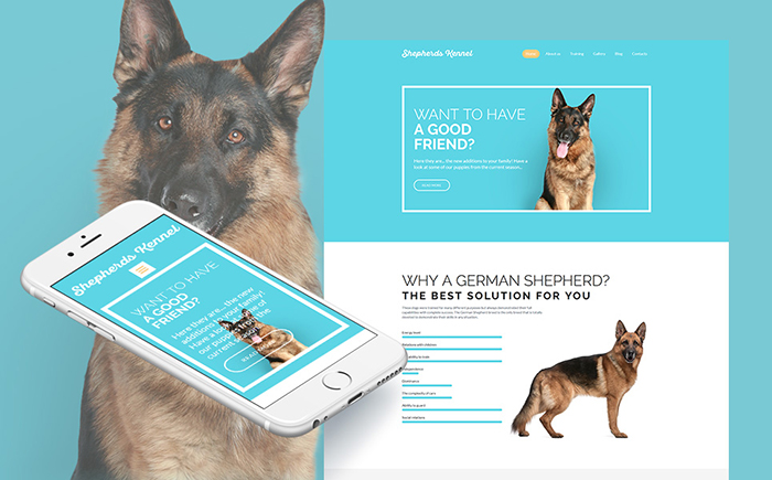 Shepherds Kennel Responsive Moto CMS 3 Template