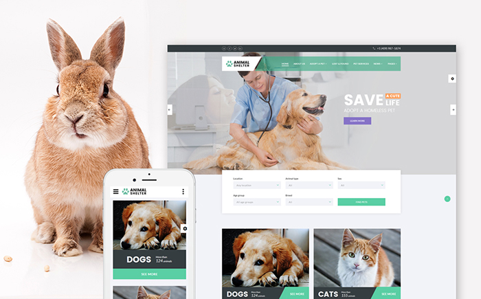 Animal Shelter Site Template